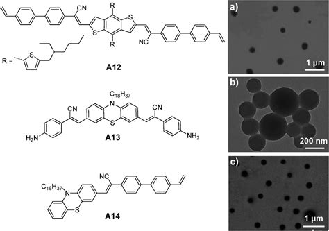 Polymer-encapsulated organic nanoparticles for ... F24