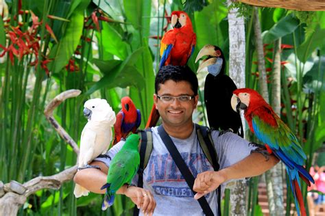 20 Square Metres by Bali Bird Park Beji Tour Amp Travel Balibeji Tour Amp Travel