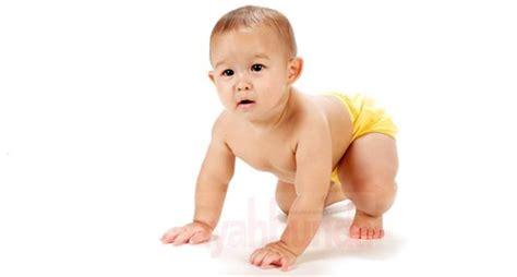 Seri Ayahbunda Edisi Balita Sehat bayi merangkak sehat dan cerdas