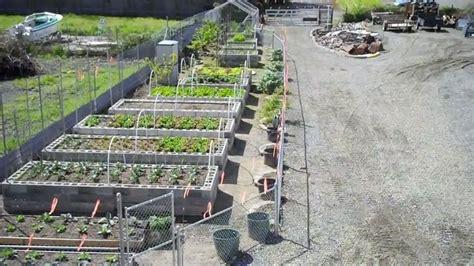 24 Best Images About Garden Ideas On Pinterest Raised Cinder Block Vegetable Garden
