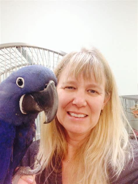 grooming stuart fl birds on safari pet stores 1290 nw federal hwy stuart fl phone number yelp