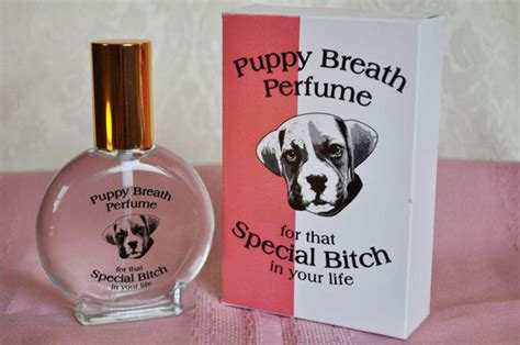 what is puppy breath puppy breath perfume for that special in your