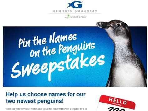 Sweepstakes Names - sweepstakes names 28 images nameasnackimal the name a snackimal contest pin the