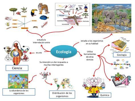 imagenes mentales integradoras mapas mentales de sistema f 237 sico sistema biol 243 gico