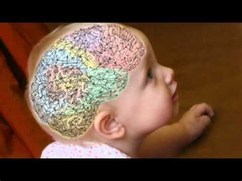 Baby Brain by Baby Brain Growth
