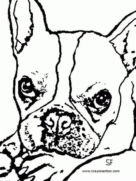 puppy birthday coloring page bull dog coloring pages birthday az coloring pages