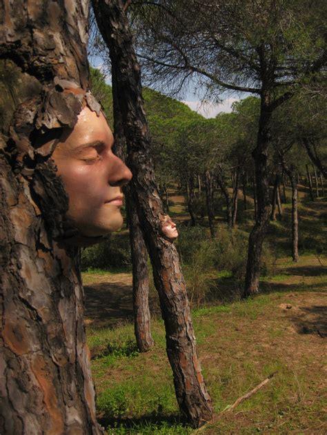 tree faces stone art blog tree art for national tree week