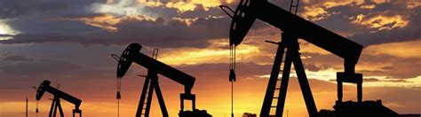 And Gas Mba Uk by Mini Mba Understanding Petroleum Industry Dynamics Course