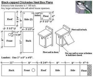 black capped chickadee bird house plans diy for wild