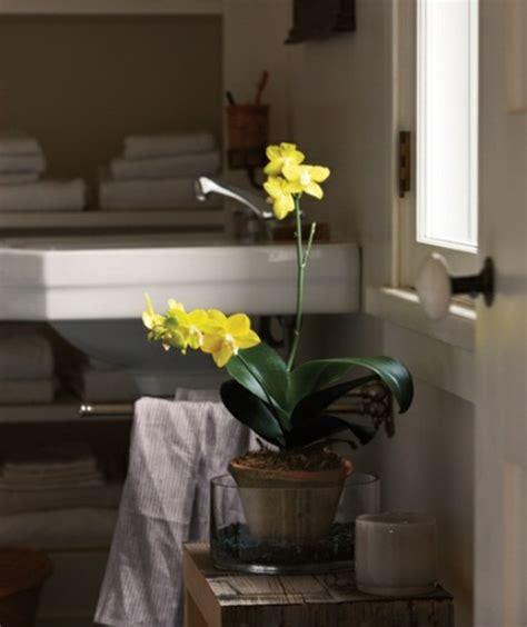 Badezimmer Gelb Dekorieren by Badezimmer Design Mit Blumen Und Pflanzen Originelle