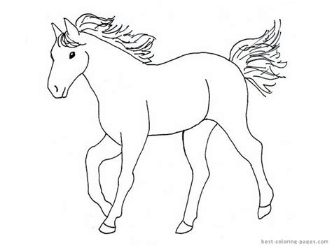 simple horse coloring page horses pictures for kids az coloring pages