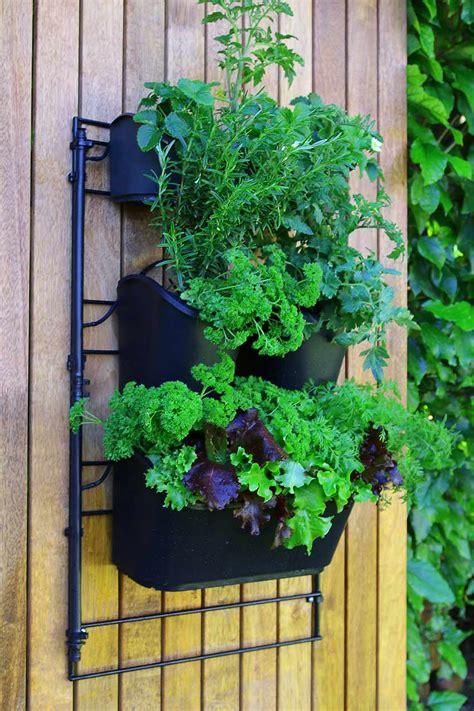 Holman Greenwall Vertical Garden Kit Wall Mounted Planting Kit Holman Industries
