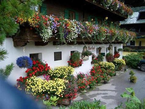 giardini fioriti tutto l anno tantissimi auguri mamma orsa cittadiluce it