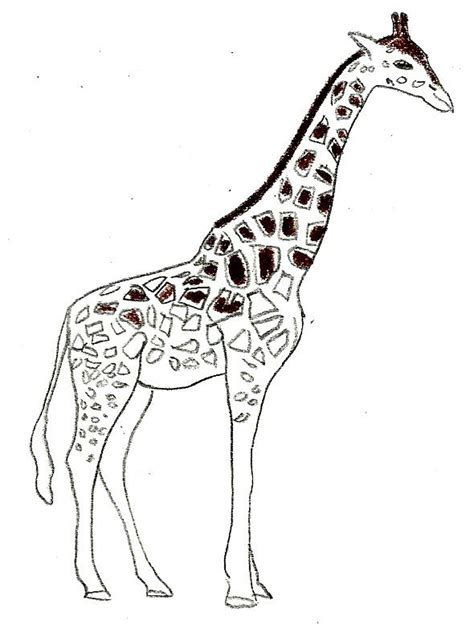 how to draw a giraffe doodle comment dessiner une girafe 8 233 avec des photos