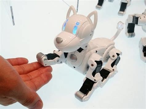 robo puppy need a pet get a robot it s smartphone controlled futuristic news