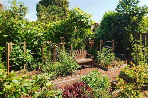 Nice Backyards by 24 Fantastic Backyard Vegetable Garden Ideas