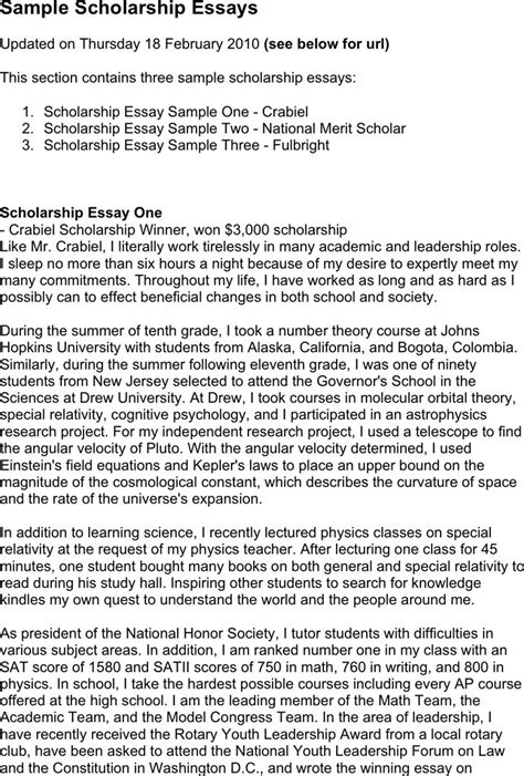 Exle Of Scholarship Essays by Scholarship Essay Exles Free Premium Templates Forms Sles For Jpeg Png