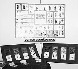 Verbraucherzentrale Hessen Musterbrief Bearbeitungsgebühr Kredit Die Achtziger Jahre 50 Jahre Verbraucherzentrale Hessen