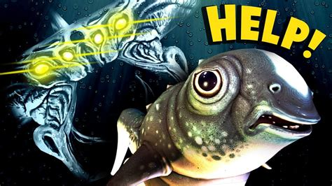 EpicAmazing~Subnautica - WHAT WILL HAPPEN TO THE CUTEFISH ...