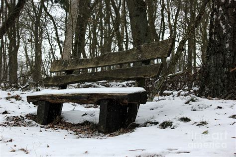 bench in snow parkbench in the snow photograph by four hands art