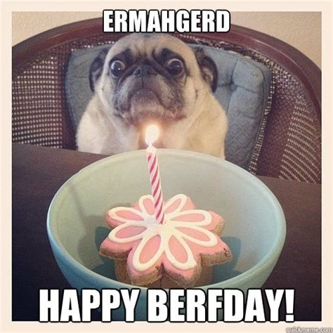 pug birthday meme happy birthday pug meme memes