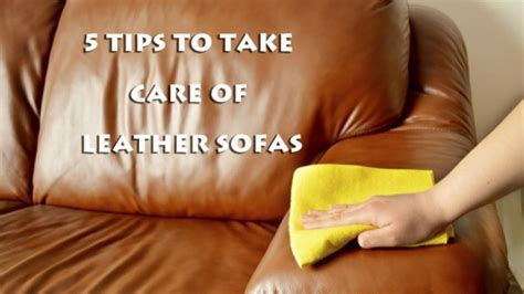 how to take care of leather sofa 5 tips to take care of leather sofas