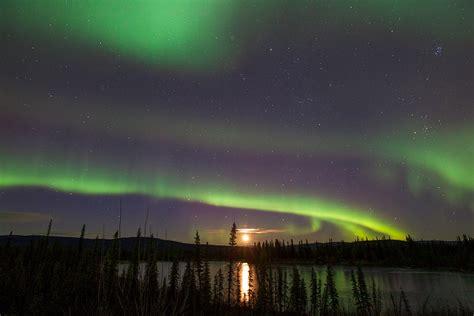 alaska lights tour the alaska northern lights tours