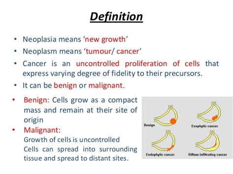 neoplasia characteristics and classification of cancer
