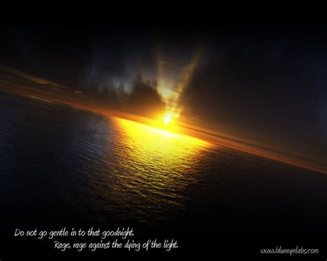 Rage Rage Against The Dying Of The Light Meaning by Rage Rage Against The Dying By Blue Eyed Assasin On Deviantart