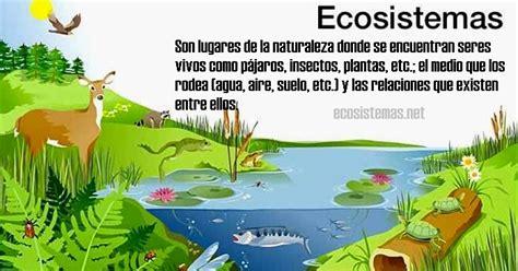 librer 237 a especializada olejnik como multiplicar la inteligencia de su bebe la revolucion pacifica ecosistemas para ninos qu 233 es un ecosistema para ni 241 os ecosistemas