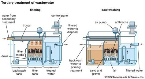 Another One Shipped To Rehab by Wastewater Treatment Oxidation Pond Britannica