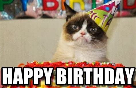 Grumpy Cat Happy Birthday Meme - happy birthday grumpy cat birthday meme on memegen