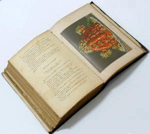 libro persiana recetas de oriente libros de cocina antiguos para consultar disponibles de manera gratuita para todos vosotros