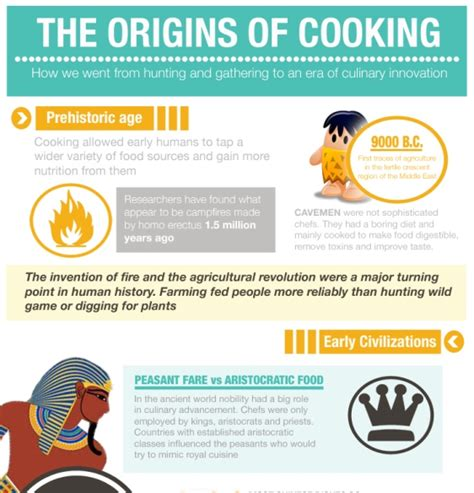 cooking infographics top 10 cooking infographics