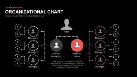 organizational chart powerpoint keynote template slidebazaar