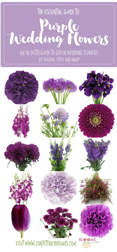 names of purple complete guide to purple wedding flowers purple flower