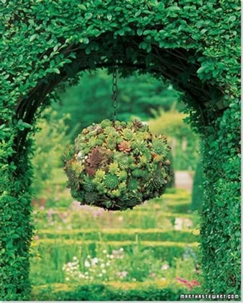 garden hanging succulent ball wonderfuldiy com