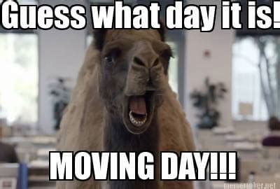 Memes About Moving - 10 memes all people who are getting ready to move with
