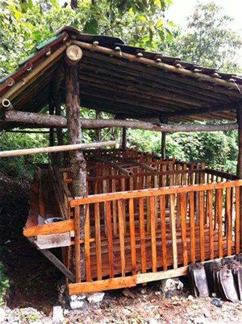 artikel membuat kandang entok usaha ternak kambing pesantren darush sholihin darush