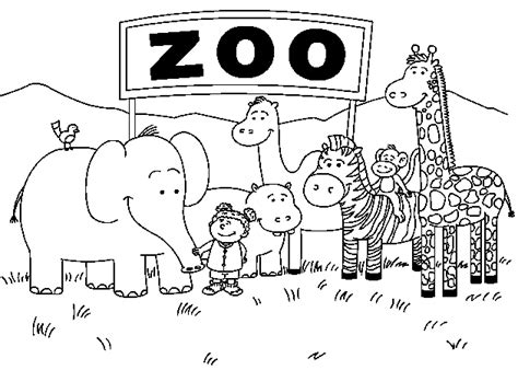 Free Printable Coloring Pages Zoo Animals L