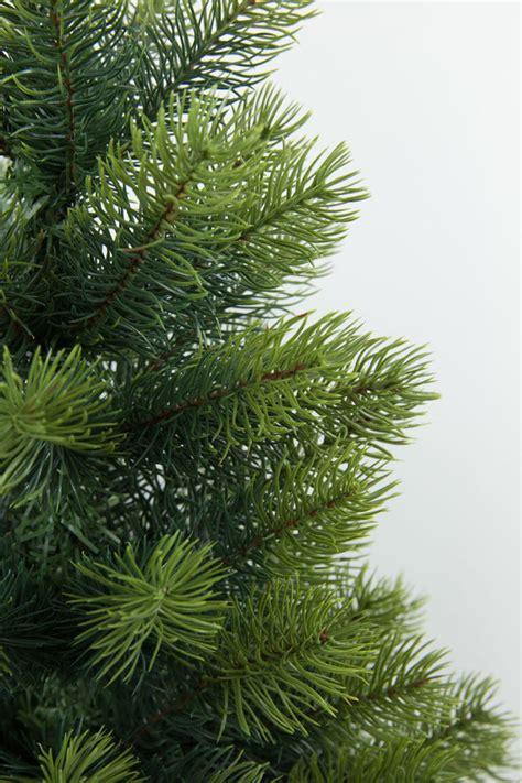 weihnachtsbaum kunststoff kunststoff tannenbaum my