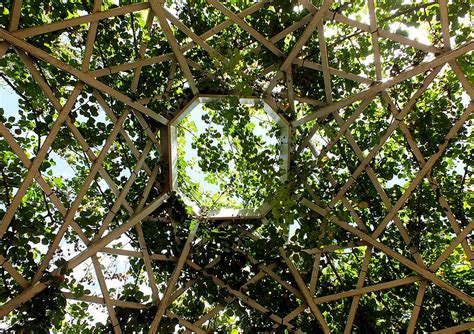 trellis with roof trellis roof photograph by pettingell