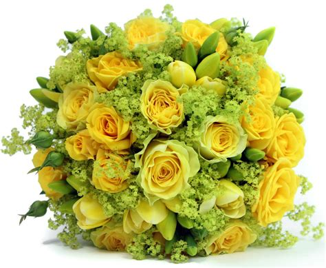 Flower Gift Delivery by Flower Gifts Time Gifts Gifts