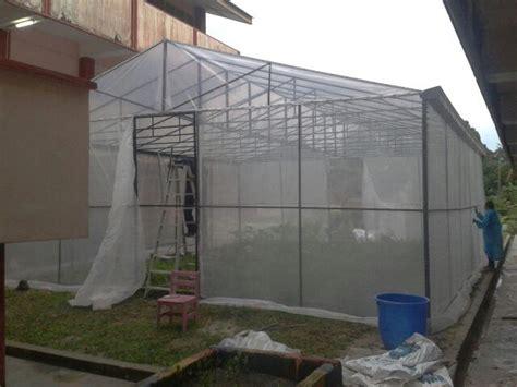 membuat rumah hijau projek tanaman pokok tin ppki pemasangan rumah hijau