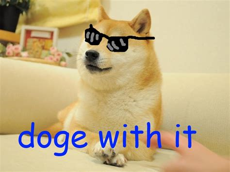 What Is The Doge Meme - doge with it doge know your meme