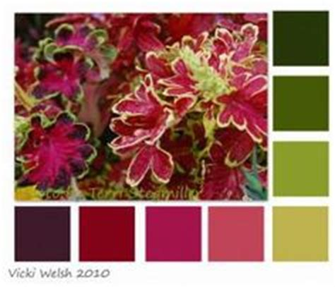 bohemian color scheme 1000 images about colors on pinterest bohemian