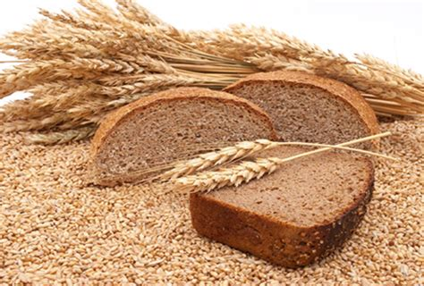daily bead how in the world give us today our daily bread