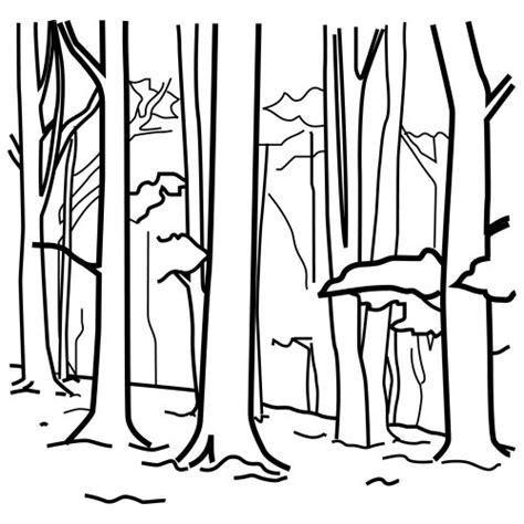 imagenes para colorear bosque dibujos de bosques para colorear