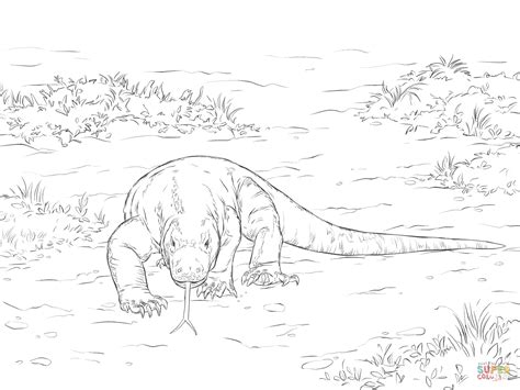 walking komodo dragon coloring page free printable