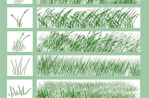 grass pattern brush photoshop a collection of free grass brushes for photoshop designbeep